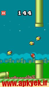 دانلود بازی اردک های بی حس Flappy Crush v1.91 اندروید مود شده