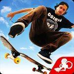 Skateboard-icon