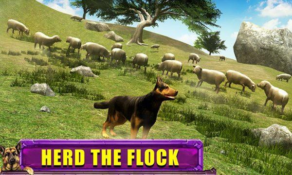 دانلود بازی سه بعدی سگ Shepherd Dog Simulator 3D v1.0 اندروید