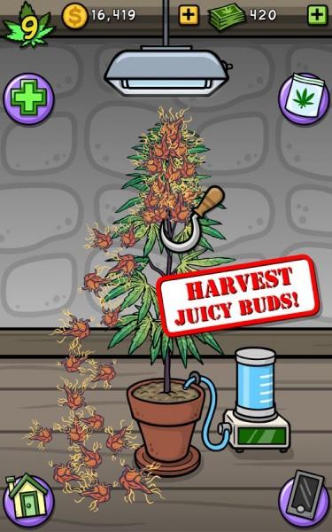 دانلود بازی گیاهان مزرعه Pot Farm – Grass Roots v1.9.2 اندروید
